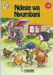 Ndege Wa Nyumbani 1B