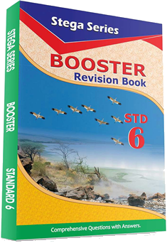 Stega Series Booster 6