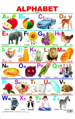 Alphabet Chart Laminated DL