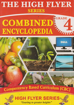 High Flyer Encyclopaedia Grade 4